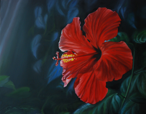 Hibiscus, MASSICOTTE, Guy-Anne